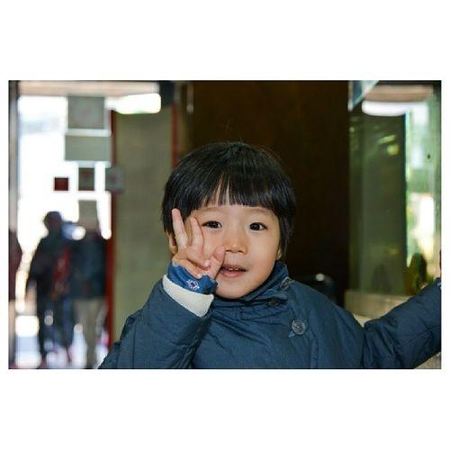 Jeju_korea Jejuisland Jejudo Jeju korea southkorea 제주 제주도 프시케월드 은호 스넵