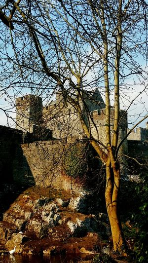 Cahir Castle : This historic castle in Cahir , Co Tipperary , Ireland was home to the Tipperary Butlers , the Barons of Cahir and was beseiged by Oliver Cromwell in 1650 .