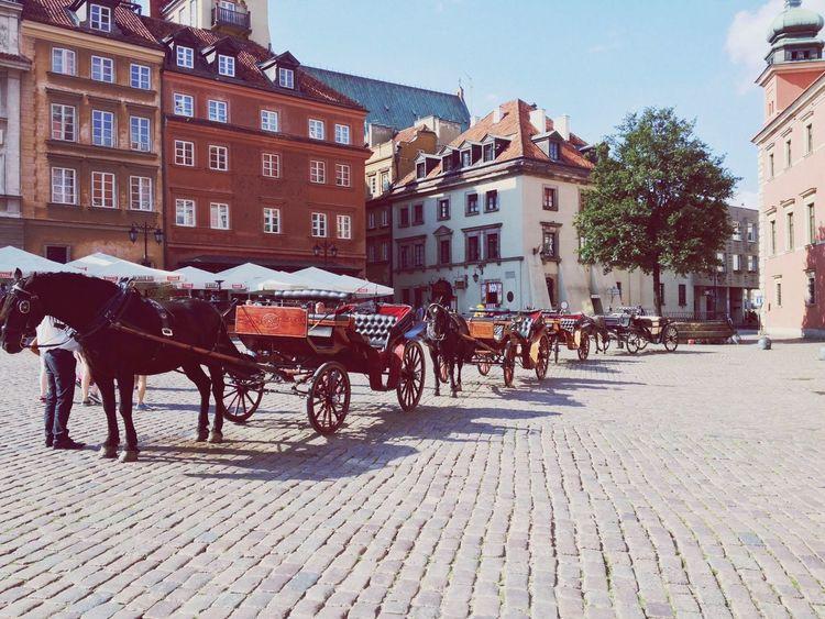 Warsaw Horse Exploring History