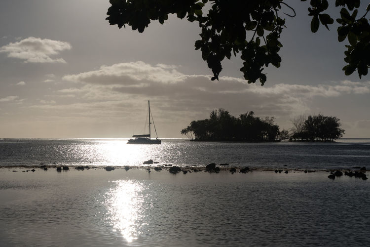 Catamaran Cloudscape Sunset_collection Tahitian Sunset Travel Photography Beach Beauty In Nature Cloud - Sky Clouds And Sky Horizon Over Water Island No People Outdoors Sailboat Sailing Scenics Sea Silhouette Sky Sunset Tahiti Tranquility Tree Water Waterfront