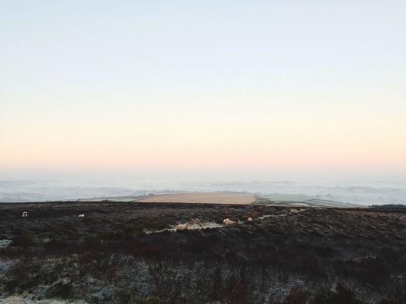 Lancashire Sunrise Frost Winter