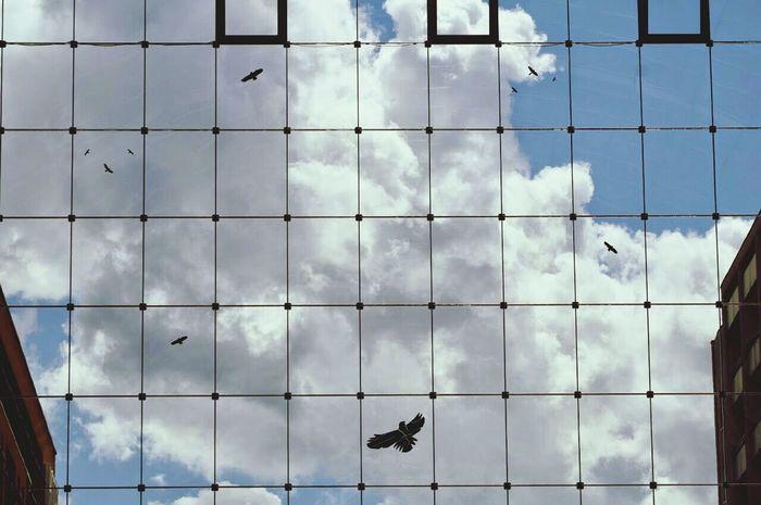 WorldTradeCenter Clouds Canonphotography Eyem Gallery EyeEm Best Shots - My World