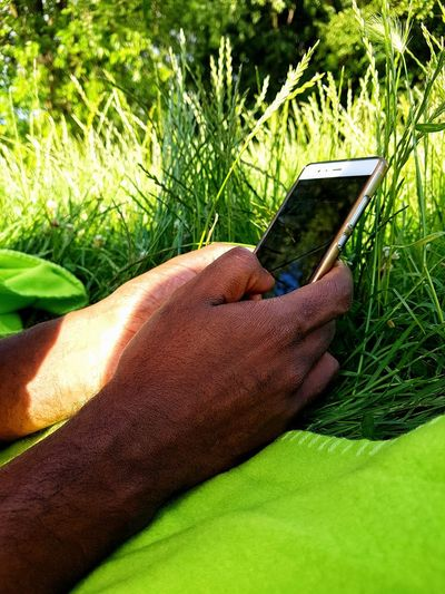 Man's Hands Black Man Internet Searching Man Using His Phone Man In The Park Outdoors Communication Mobile Phone Man With A Phone Technology Cellphone Human Hand Nature Tree Grass Close-up Human Body Part Real People One Person Green Color Green