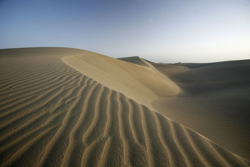 Scenic view of sand dunes at desert against sky