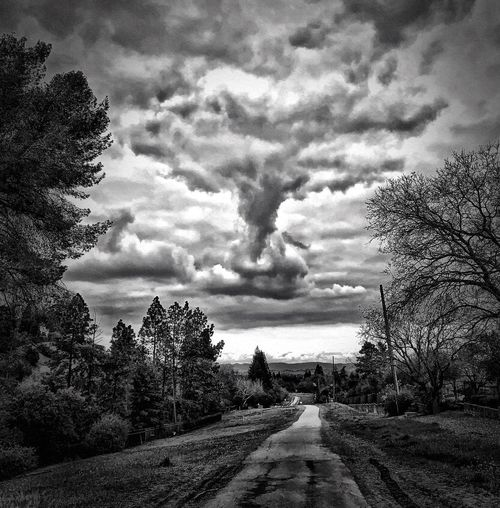 """Thunder god"" A dramatic thunder cloud hovers threateningly over an open space trail in the San Francisco East Bay Area. Suburban Exploration Thunderclouds Dramatic Clouds Dramatic Sky Blackandwhite Black And White Blackandwhite Photography Black And White Photography Cloud - Sky Sky Tree Nature No People Day Storm Overcast Ominous"