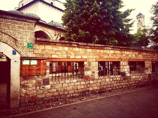 Sarajevo Huawei Photography Vintage Tree Architecture Building Exterior Sky Built Structure