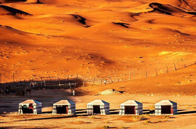 Bedouin tents on the outskirts of Al Ain, UAE. Desert Alain UAE Expat Life Bedouin Arabia
