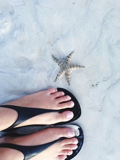 Low Section Of Woman By Starfish At Beach