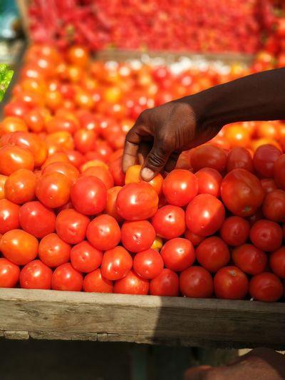 Live Fresh 3XSPUnity Tomatoes Fruit Vegetable Freshness Life Business Finance And Industry Business City Farmer Market Market Stall Market Vendor Street Food Bazaar Vendor