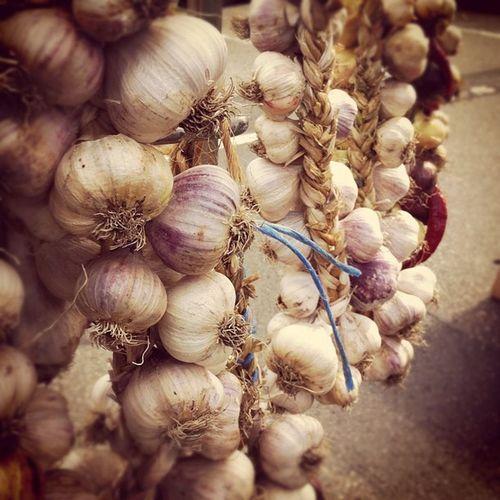 #organic Garlic #food #regensburg Food Regensburg Organic