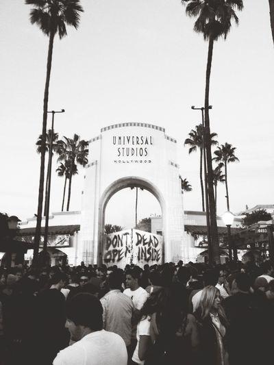 Halloween Horror Nights Universal Studios Hollywood Universal Studios  Long Lines
