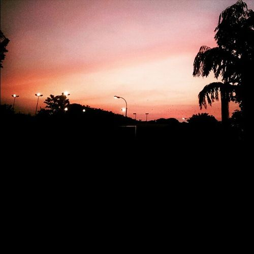 Nature at its best Evening Beutifulsky FavPic Vit Motox