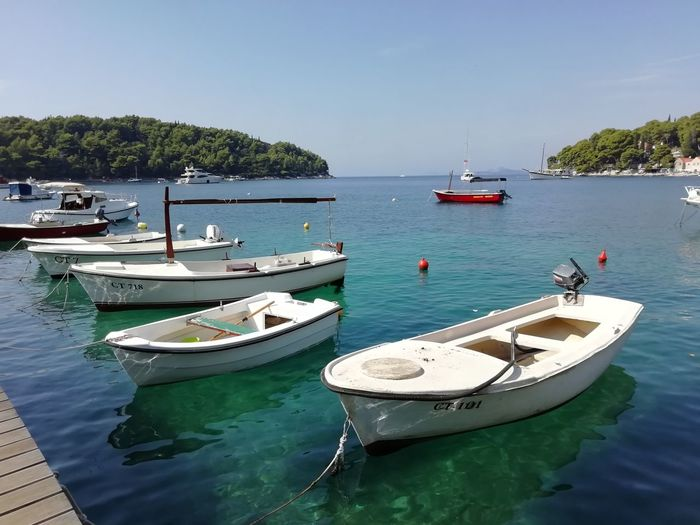 Boat Cavtat , Croatia Croatia Tree Water Nautical Vessel Sea Clear Sky Beach Moored Harbor Buoy Rowboat