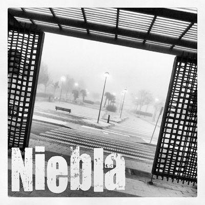 Hoy amanece con niebla y frío en Leganés