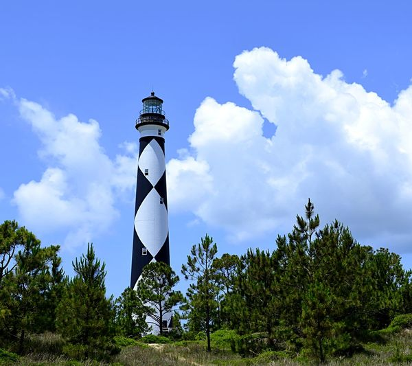Cape Lookout lighthouse in North Carolina Sky Cloud - Sky Plant Tree Nature No People Beauty In Nature Day Outdoors Built Structure Lighthouse Cape Lookout National Seashore Cape Lookout Pjpink 2catswithcameras EyeEm Gallery