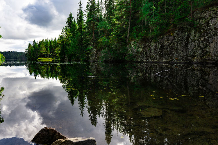 Hiking Norway Reflection Beauty In Nature Cloud - Sky Day Forest Growth Lake Nature No People Non-urban Scene Outdoors Plant Reflection Reflection Lake Reflections In The Water Scenics - Nature Sky Sognsvann Tranquil Scene Tranquility Tree Water Waterfront