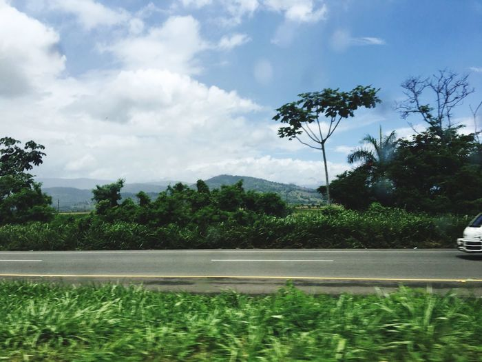 Dominican Republic Tree Growth Sky Nature Cloud - Sky Day Road No People Plant Beauty In Nature Outdoors Scenics Water Landscape