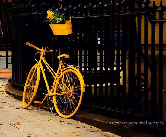 Celebrate Your Ride The Week Of Eyeem EyeEm United Kingdom