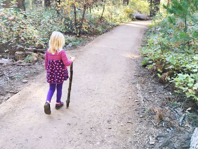 California State Parks Big Trees Redwoods California Redwoods Arnold California United States Girl Walk Hike Childhood Childhood Memories The Following