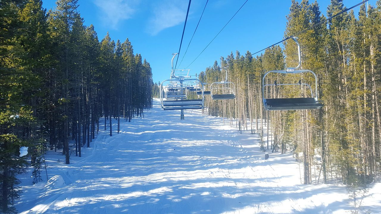 Ski Lift Over Snowy Pathway Amidst Trees During Winter