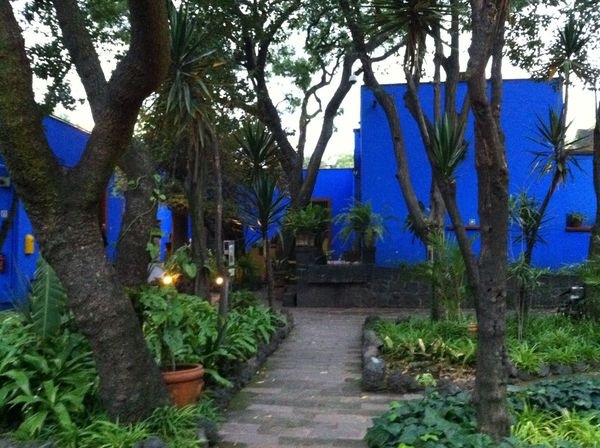 Frida Kahlo Museum Beauty In Nature Blue Day House Spirituality Tree