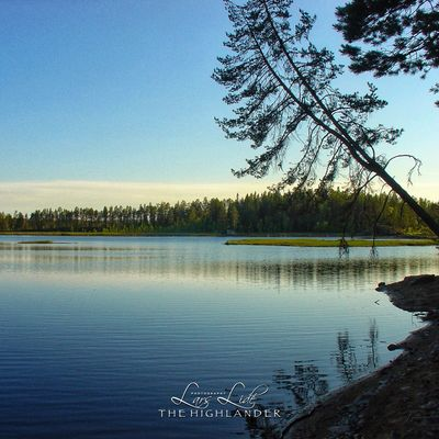 Tree Water Sky Plant Tranquil Scene Lake Scenics - Nature Beauty In Nature