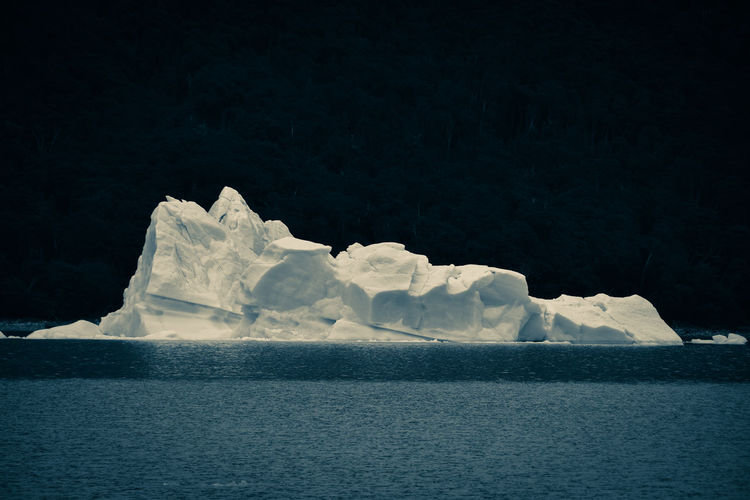 Scenic view of iceberg against forest