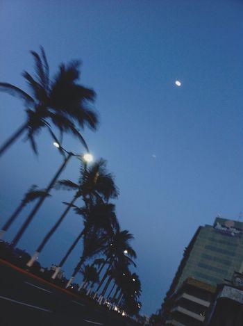 🌑🌴. Veracruz Anochecer Oscuro Luna Black