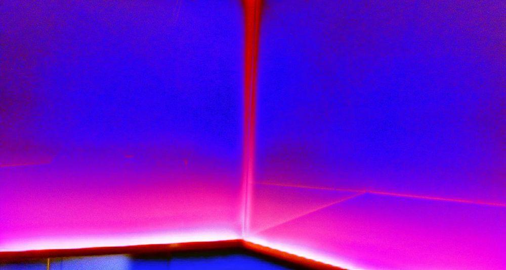 Neon Lights Toilette Art