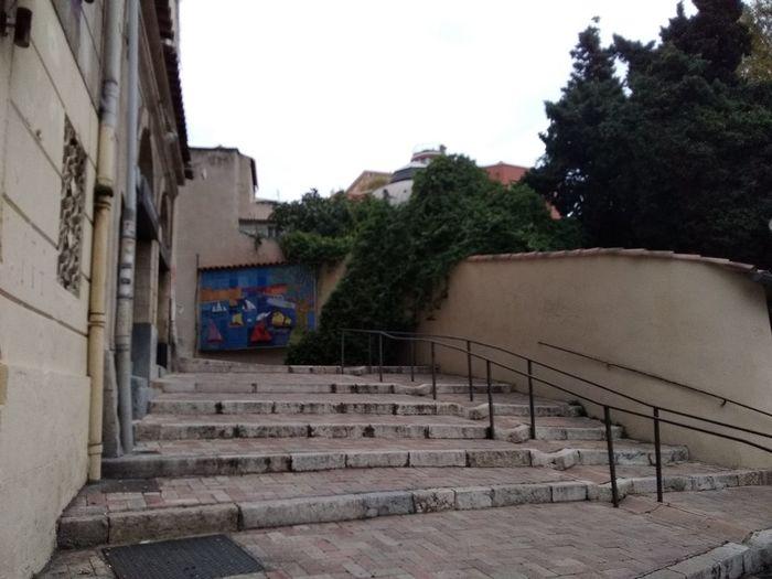 Tree City Steps