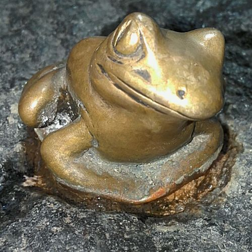 PublicArtworks Public Artwork No People No People! Animal Representation Check This Out Close-up Frogs Brass Say Cheese Smile Frog Brass Frog Brassfrog Taking Photos Brass Sculpture Brass Statues Frogs🐸 Brass Frogs Animal Themes Frog On A Rock Froggy Kermit Frog Sculpture FrogSculptures Frog Statue Froggie Frog Face Frogface BrassSculptures