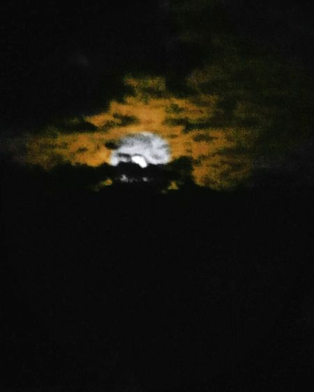 my moon is orange 😁😍follow me Moon Night Orangemoon Yellowmoon Moonlight Moon Surface Moon Shots Moon Moonshine Moon_collection Nightphotography Night Lights Nature Photography Black Background Tree Sky