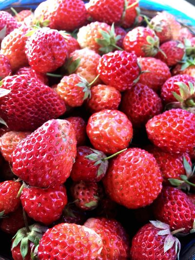 Sweet Passion Love Eat Strawberries