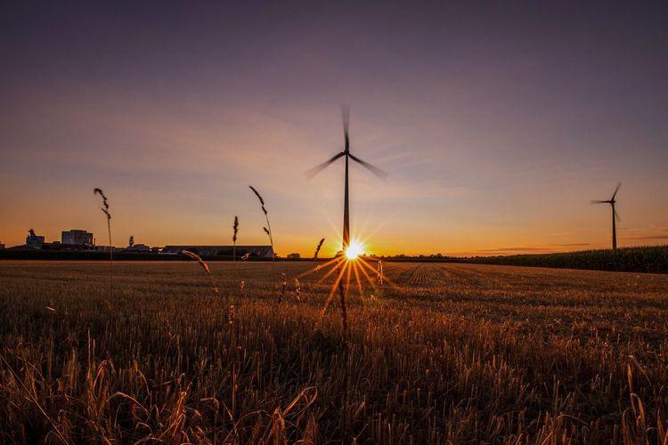 Sonnenuntergang am Niederrhein Sonnenuntergang Sunset Windrad Borth Turbine Wind Turbine Environment Renewable Energy Alternative Energy Sky Fuel And Power Generation