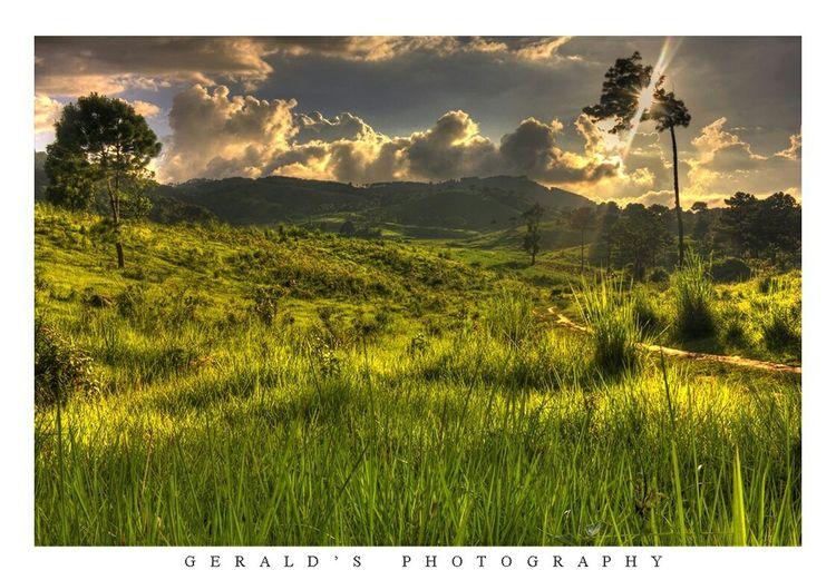 Shot at Nongkohlew village..😊😊 Landscape_photography Landscape Landscape_Collection Landscapes Shillong Sunset Khasi_beauty Meghalaya. Meghalaya Taking Photos