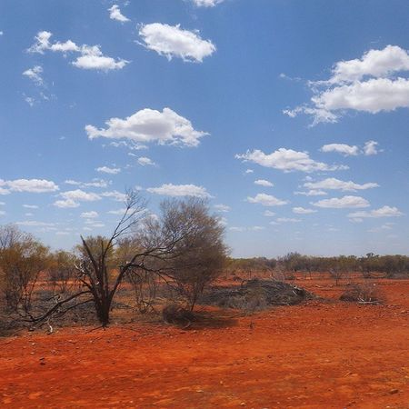 The bluest of skies, in contrast with the vivid red desert sand, also capturing the aftermath of a bushfire. Picture perfect. This is the true Outback NTAustralia Seeaustralia AusOutbackNT RedCentre EarthPix RTW Travelling RoadTrip ChasingTheWorld LifeOnTheMove