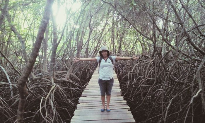 Mangrove Forest Mangrove Mangrove Forest Mangrove Life Roots Of Tree Roots And Branches Root Travel Destinations Travel Photography Traveling Plants Vacations Beautiful Nature Amazing Place Outdoor Photography Nature Photography Tree Full Length One Person Casual Clothing Front View Young Adult Nature Outdoors Day Growth Standing Real People One Woman Only Only Women People Adult Sky