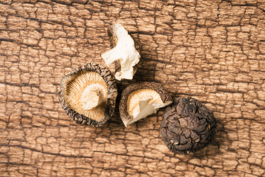 Close-up Edible  Food Food And Drink Freshness Fungus Indoors  Lentinus Edodes Mushroom Nature No People Shiitake
