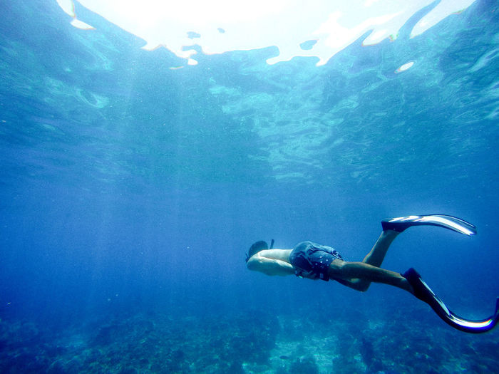 Life Under Sea.