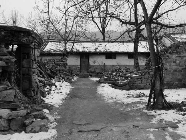 Old house / Qianxi, Hebei Tree Built Structure Bare Tree Nature Day Outdoors Architecture No People Sky Mobilephotography IPhoneography Iphone6 Hometown EyeEm Best Shots Tree Cold Temperature Winter Blackandwhite Black And White Black & White Old Buildings Village Blackandwhite Photography Home BEIJING北京CHINA中国BEAUTY