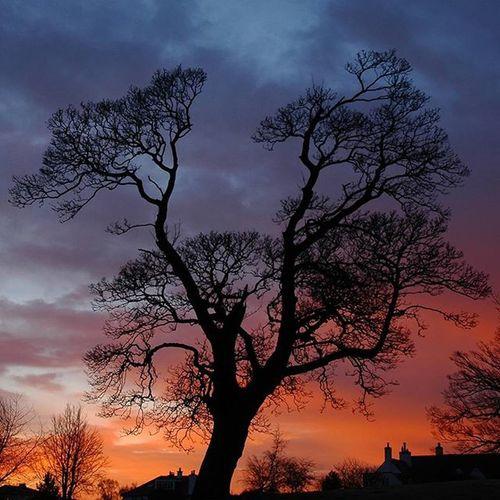 The Silhouette. Edinburgh Silhouette Sky Sunrise