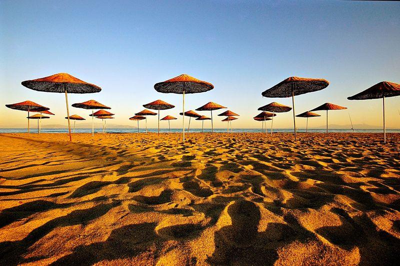 Umbrellas on sand at beach against sky