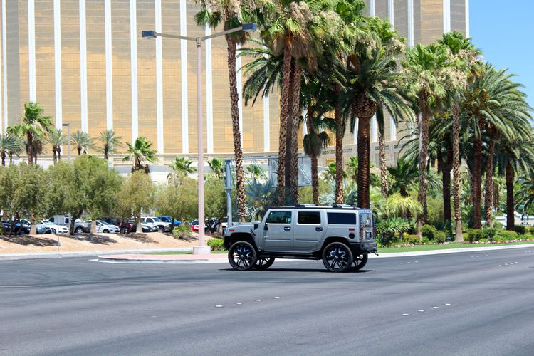 BIG Cars Funny Las Vegas Typical USA United States Cliche Extravagance Guns Not A Joke. Wedding Chapel