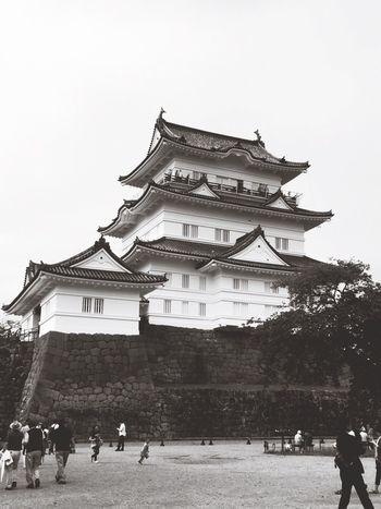 小田原城 Odawara Castle / Japan