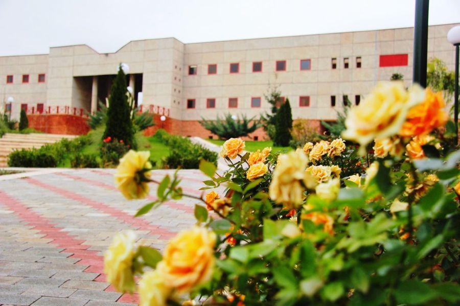 Iran Zanjan IASBS Flowers Garden Garden Photography NewAngel ^_^