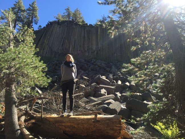 Devils Postpile National Monument Inyo National Forest USA Casual Clothing Day Devils Postpile Fire Forest Full Length Growth Inyo Leisure Activity Lifestyles Nature One Person Outdoors Plant Real People Roadtrip Sierra Nevada Standing Sunlight Tree Women Young Adult Young Women