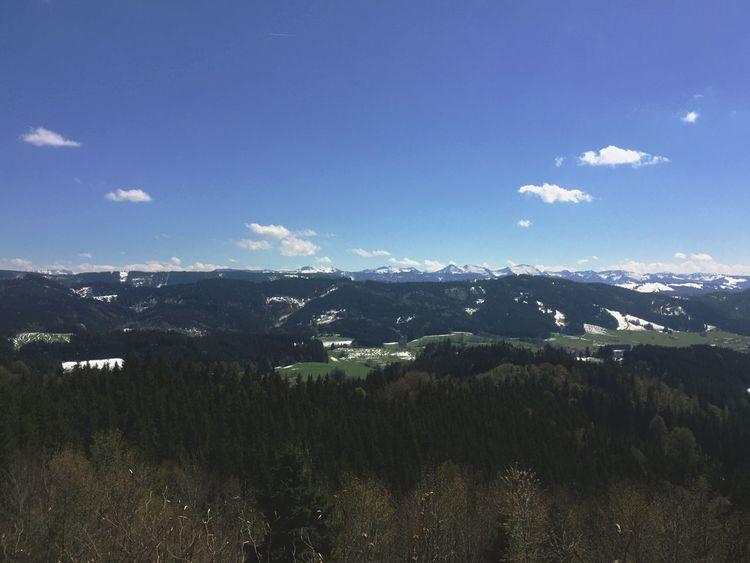 Blick von der Schletter auf die Alpen