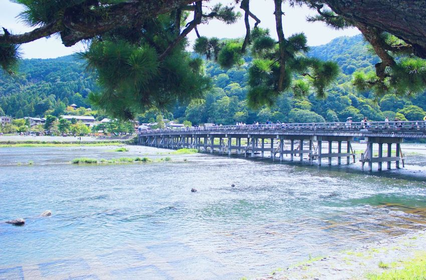 Summer Connection Bridge - Man Made Structure Water Built Structure Architecture River Tree Transportation Kyoto Japan Nature Kyoto,japan Hello World Bridge Nature Waterfront Tranquility Scenics Tranquil Scene Mountain