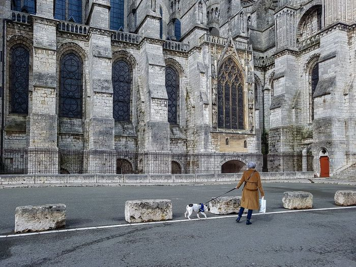 Cathedral Chartres Cathedral France Architecture Day Dog History One Person Outdoors Real People Religion Travel Destinations Women Stories From The City The Street Photographer - 2018 EyeEm Awards