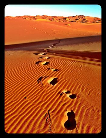 Footprints Travel Photography Amazing View Desert Deserts Around The World Morning Light Sahara Desert Morocco